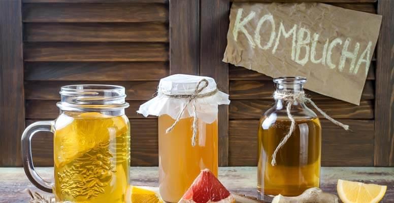 hongo-kombucha